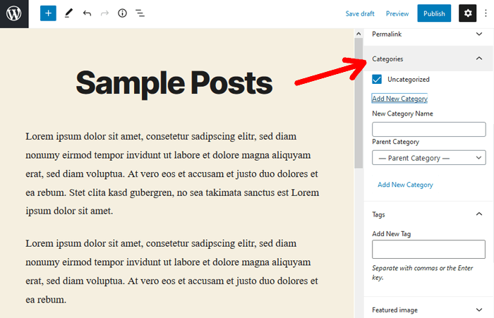 Posts Category and Tags