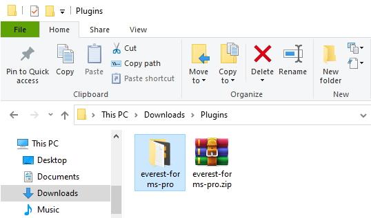 everest forms pro folder