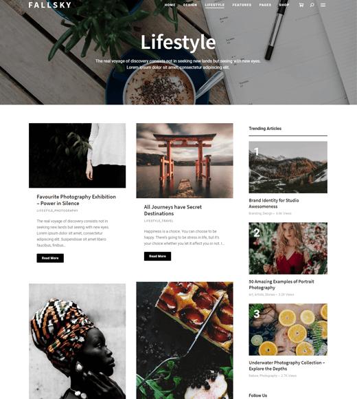 Fallsky-Lifestyle Blog Theme