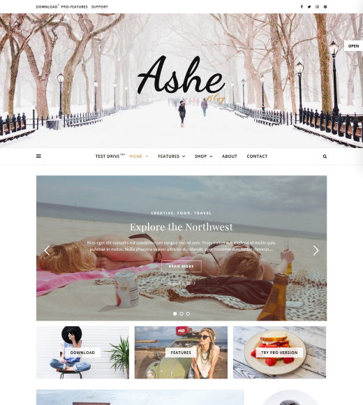 Ashe best free responsive theme