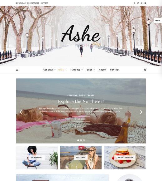 ashe free wordpress theme with slider