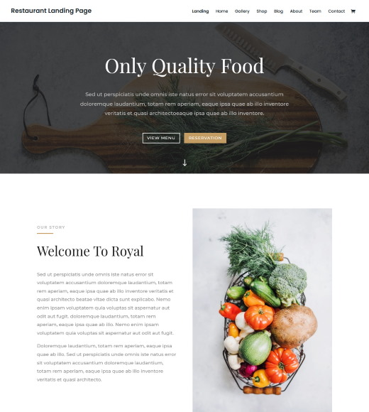 divi best free responsive themes with slider