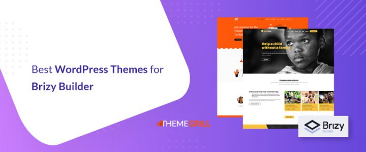 15 Best Brizy WordPress Themes for 2020 (With Stunning Starter Sites)