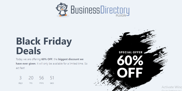 Business Directory Plugin for Black Friday