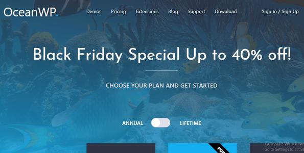 OceanWP WordPress Black Friday 2020
