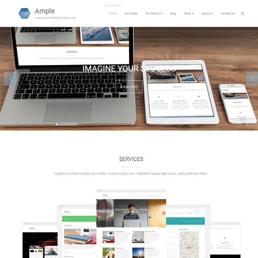 Ample WordPress Theme Demo