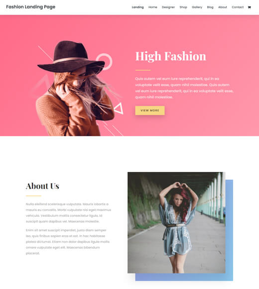 divi best woocommerce theme with elementor