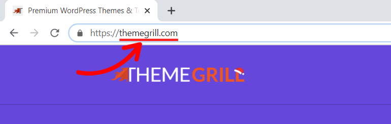 Domain Name Example ThemeGrill