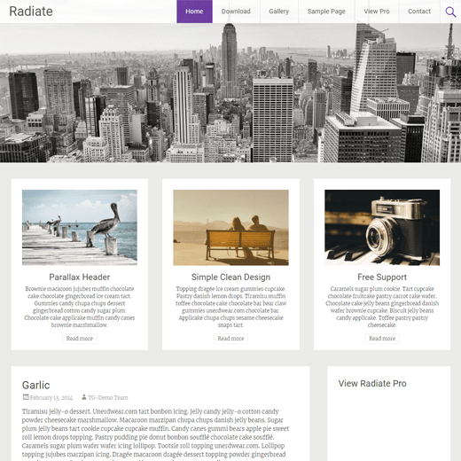 Radiate WordPress Theme Demo