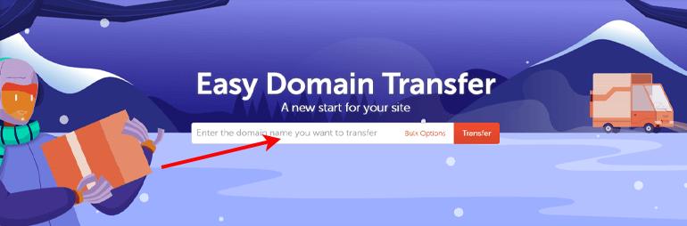 Namecheap Domain Transfer