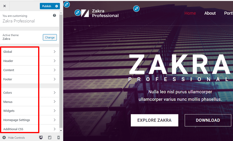 Customization Options in Zakra Theme