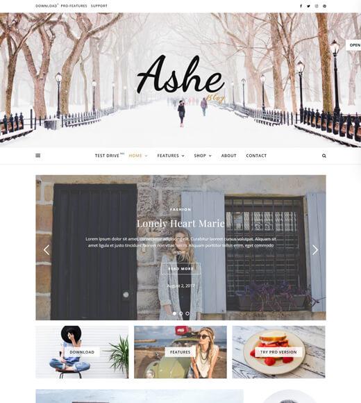 ashe most versatile wordpress themes