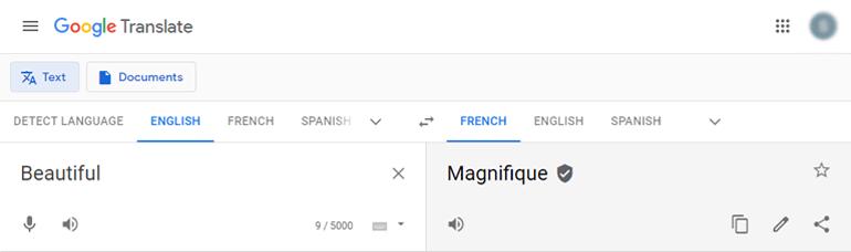 Google Translate for Blog Name Ideas