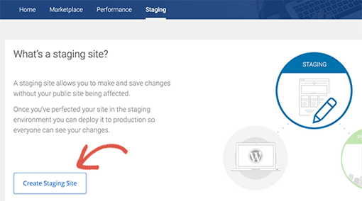 Create Staging Site