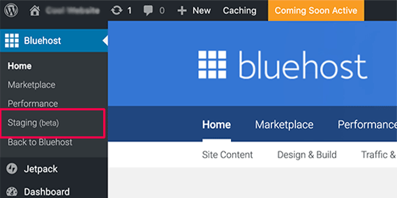 Staging Site For WordPress Bluehost