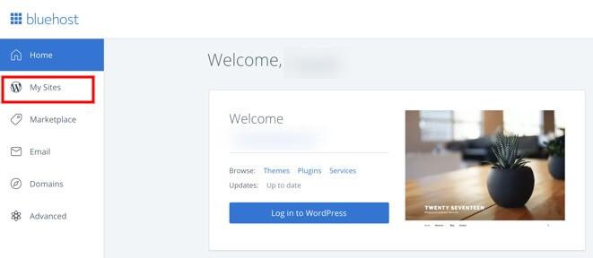 start website wordpress