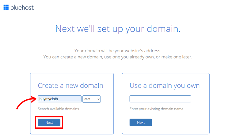 Next Button to Add Domain Name for Online Store