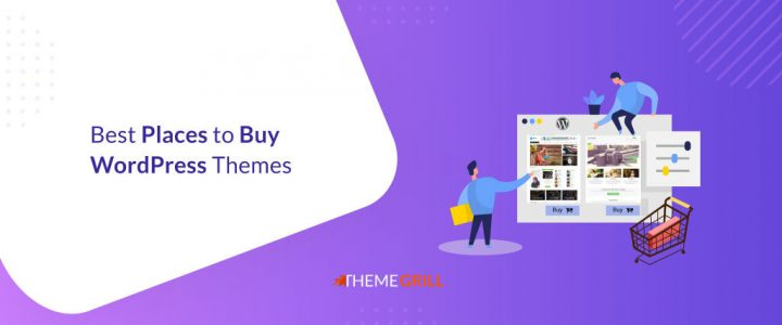 19 Best Places to Buy WordPress Themes in 2021 (Compared)