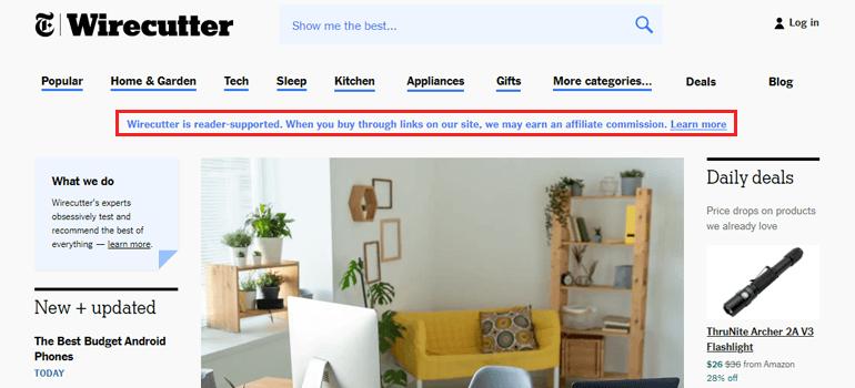 Affiliate Ads Put on My WordPress Website